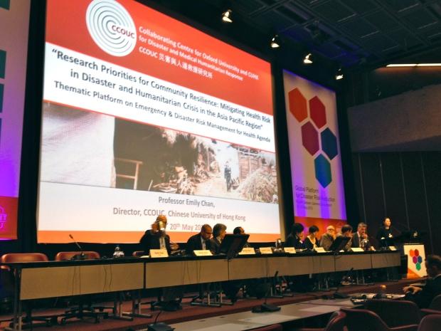 20130523 Global Platform for DRR